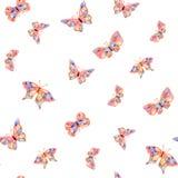 Mola do verão da borboleta da aquarela Foto de Stock Royalty Free