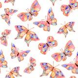 Mola do verão da borboleta da aquarela Imagem de Stock