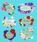 A mola do vetor floresce convites do casamento dos ramalhetes ilustração stock