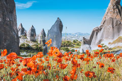Mola em Cappadocia, Turquia Imagens de Stock