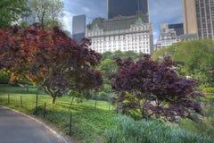 Mola em Central Park Fotografia de Stock