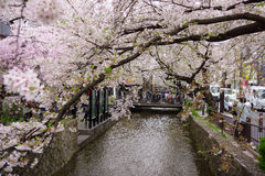 Mola em Kyoto imagens de stock royalty free
