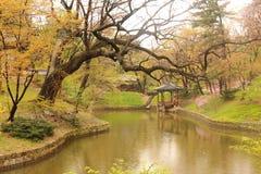 Mola em uma lagoa coreana do palácio Imagem de Stock