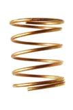 Mola espiral Imagens de Stock