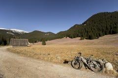A mola está ligada Aventura de MTB nas montanhas altas Paisagem bonita com açafrões de florescência Fotos de Stock