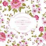 A mola floresce o ramalhete para o cartão do vintage. Fotos de Stock Royalty Free