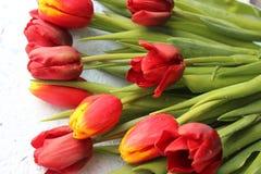 A mola floresce tulipas em uma tabela textured de pedra 8 de março, dia internacional do ` s das mulheres, dia do ` s da mãe ou a Foto de Stock Royalty Free