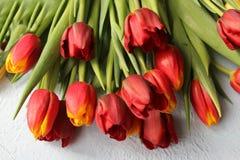A mola floresce tulipas em uma tabela textured de pedra 8 de março, dia internacional do ` s das mulheres, dia do ` s da mãe ou a Fotos de Stock