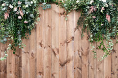 A mola fresca esverdeia com a planta da flor branca e da folha sobre o fundo de madeira da cerca fotos de stock royalty free
