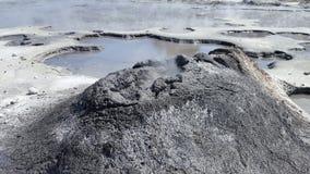 Mola geotérmica de Nova Zelândia Imagens de Stock Royalty Free