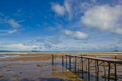 mola morza drewno Zdjęcie Royalty Free