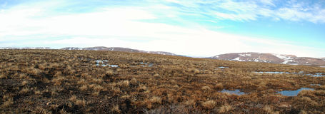 Mola na tundra (panorama de Sibéria norte) fotos de stock royalty free