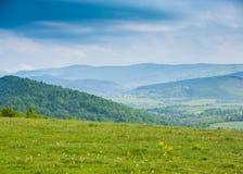 Mola nas montanhas Campo de flores da mola e de ountains azuis Imagens de Stock Royalty Free