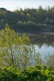 Mola, natureza, floresta da mola, campos, lagos e rios imagens de stock royalty free