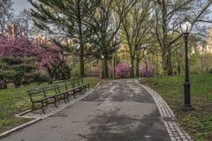 Mola no Central Park, New York City Fotos de Stock Royalty Free