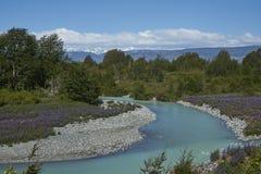 Mola no Patagonia ao longo do Carretera Austral imagem de stock