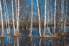 Mola no rio de Russia Fotografia de Stock