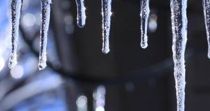 Mola ou paisagem do inverno com sincelos de cristal e gotas brilhantes de queda Vídeo com sincelo no fundo brilhante bonito filme