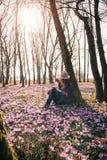 Mola Sun Açafrões de florescência na floresta e em um viajante fêmea Fotografia de Stock