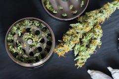 Molar för att hugga av ogräscannabis och en blomma av marijuana på en svart bakgrund som omges av skarven Arkivfoto