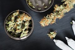 Molar för att hugga av ogräscannabis och en blomma av marijuana på en svart bakgrund som omges av skarven Royaltyfri Bild