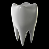 Molar tooth isolated on black. 3d image of a molar tooth isolated on black background Stock Photo