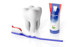 Molar tooth with toothbrush and toothpaste Stock Image