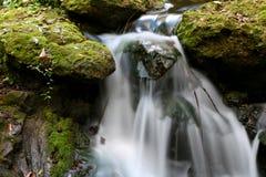 Molas do arco-íris das cachoeiras Imagens de Stock