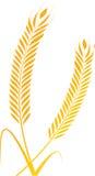 Molas do trigo ilustração royalty free