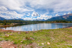 Molas Lake at Molas Pass, Colorado. This image was captured at the approximately 12,000 ft. elevation at Molas Lake at Molas Pass on Route 550 in western Royalty Free Stock Images
