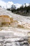 Molas térmicas em Mammoth Hot Springs em Wyoming foto de stock