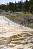 Molas térmicas em Mammoth Hot Springs em Wyoming fotos de stock royalty free