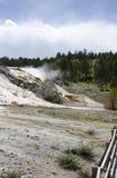 Molas térmicas em Mammoth Hot Springs em Wyoming foto de stock royalty free