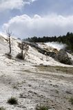 Molas térmicas em Mammoth Hot Springs em Wyoming fotografia de stock