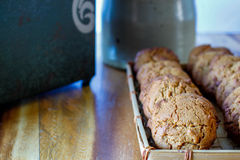 Molasse cookies royalty free stock photo
