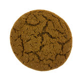 Molasses Cookie Single Royalty Free Stock Image