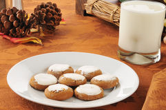 Molasses cookies and milk Royalty Free Stock Image