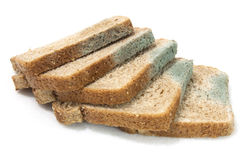 Molby Bread Slices. Molding slices of wheat bread on a white background. Horizontal Stock Images