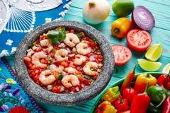 Molcajete del camarón de Ceviche de Camaron de México Imagen de archivo