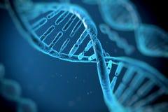 Moléculas de la DNA Imagen de archivo libre de regalías