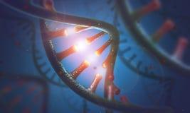 Moléculas de la DNA y del ARN Fotografía de archivo libre de regalías