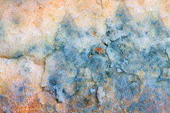Mold background Royalty Free Stock Photo