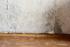 Mold. Black mold buildup in the corner of an old house royalty free stock photos