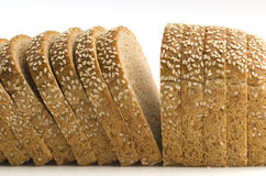 Mold bread. Mold on rye bread with sesame seeds Stock Images