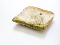 Mold on bread isolated Royalty Free Stock Images