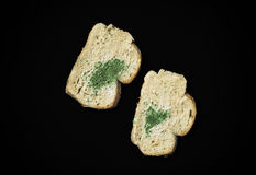 Mold on bread slice on black background Stock Photography