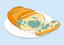 Mold food. Mold bread on plate royalty free illustration