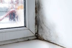 Mold in the corner of the window royalty free stock photo