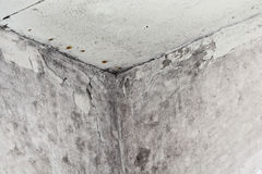 Mold. In a edge of a room stock photo