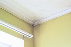 Mold in a edge. Of a room stock image
